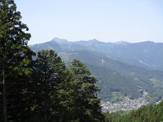 画像7: 【山旅会】青梅丘陵