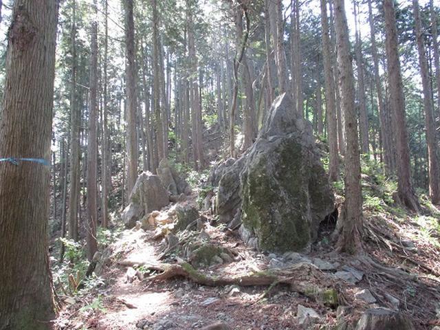 画像5: 【山旅会】青梅丘陵