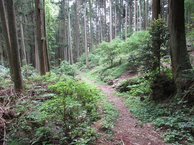 画像9: 【山旅会】馬頭刈山