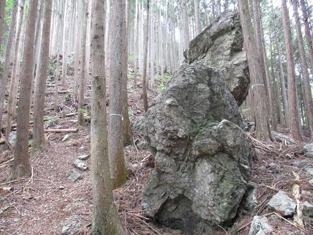 画像1: 【山旅会】馬頭刈山