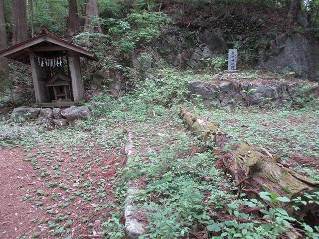 画像7: 【山旅会】馬頭刈山