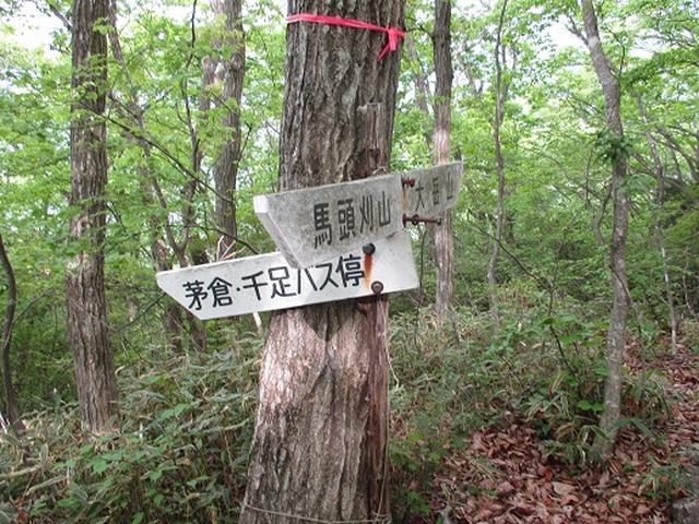 画像3: 【山旅会】馬頭刈山