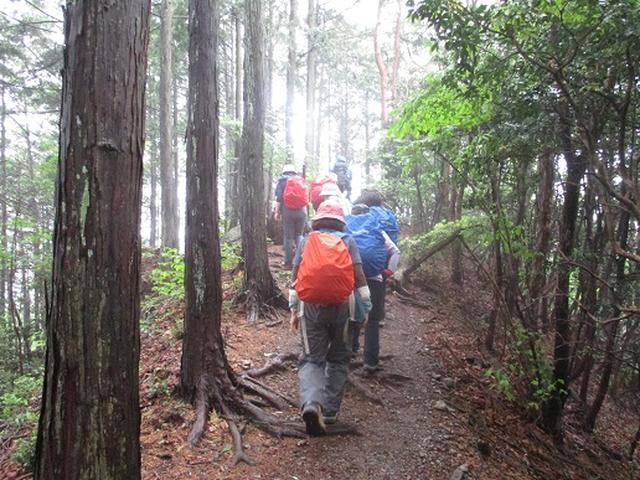 画像2: 【山旅会】越上山から顔振峠