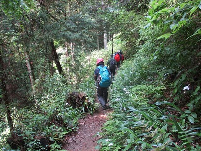 画像7: 【山旅会】越上山から顔振峠