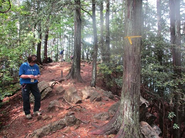画像3: 【山旅会】越上山から顔振峠