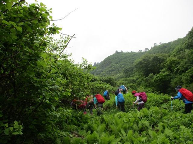 画像5: 【山旅会】坂戸山