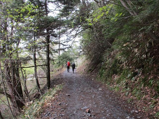 画像1: 【山旅会】上高地 その2