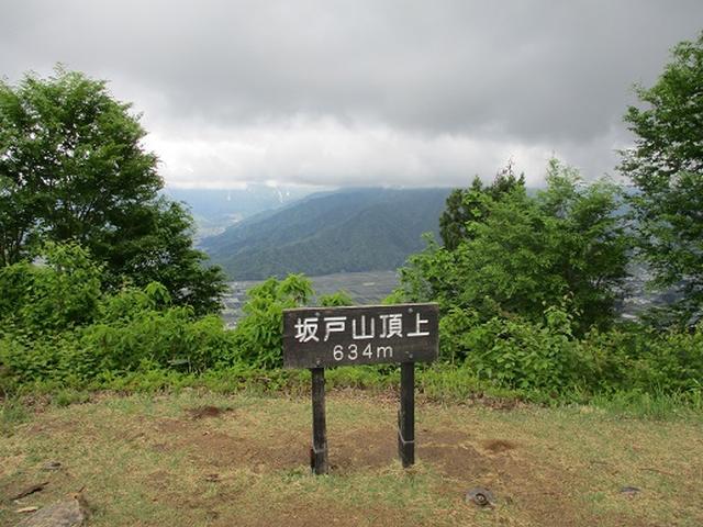 画像9: 【山旅会】坂戸山 2回目