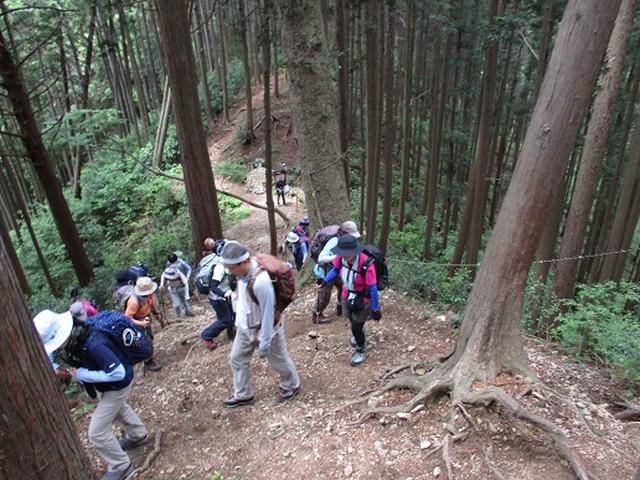 画像2: 【山旅会】青梅丘陵