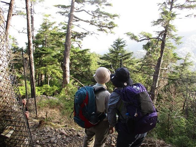 画像2: 【山旅会】雲取山から鴨沢