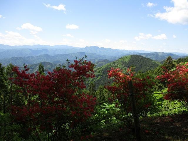 画像3: 【山旅会】城峯山