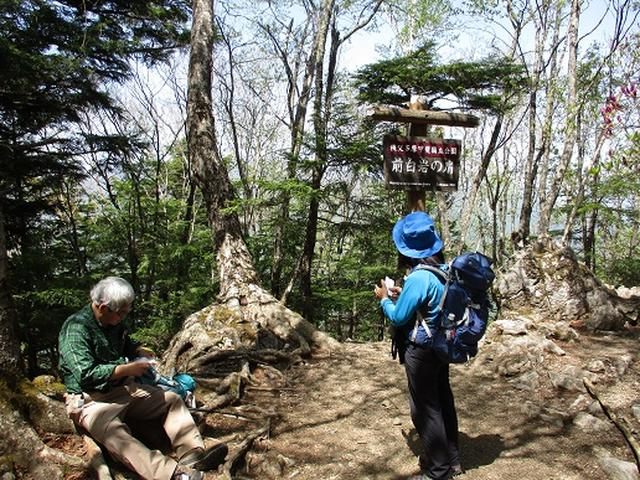 画像7: 【山旅会】三峰から雲取山