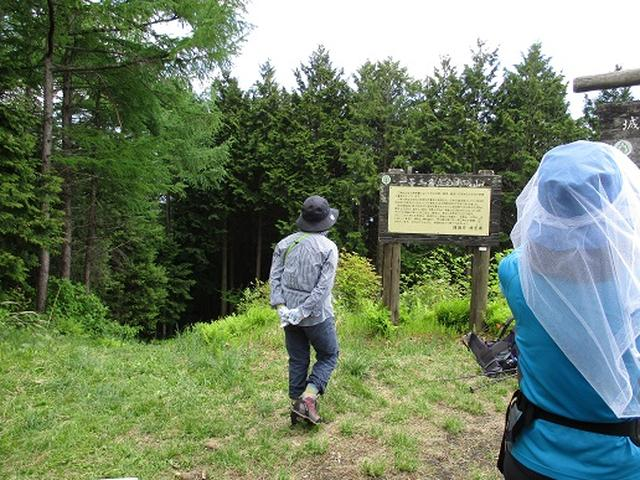 画像6: 【山旅会】城峯山