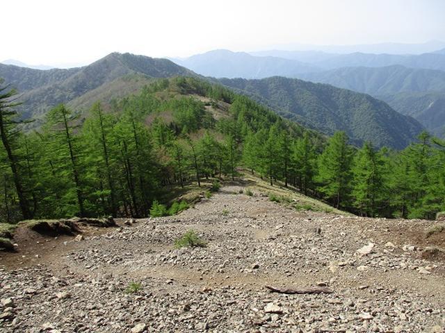 画像5: 【山旅会】雲取山から鴨沢