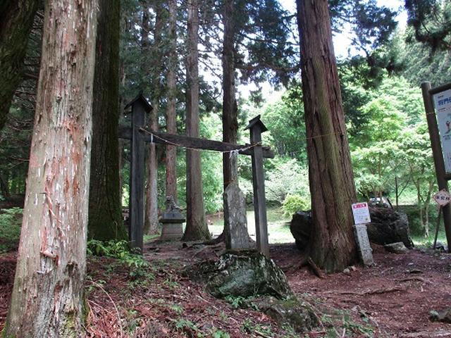 画像2: 【山旅会】城峯山