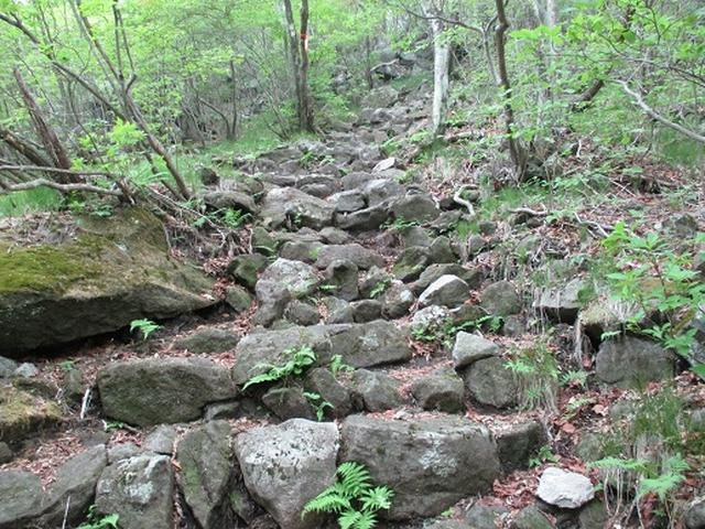 画像9: 【山旅会】榛名・二ツ岳