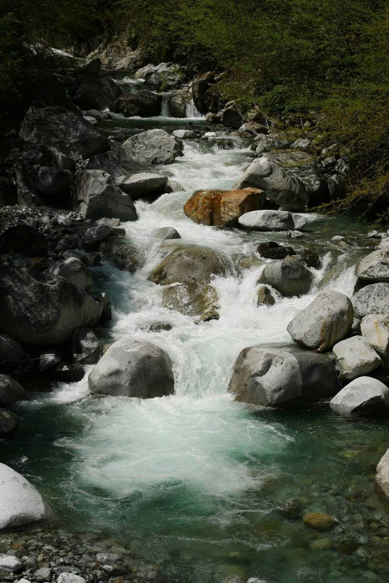 画像3: 次回おすすめのハイキングイベントは…こちら! チャンスは五年に1度! 初夏の駒ケ岳山麓「秘境しらび林道ウォーキング」日帰りツアーです。