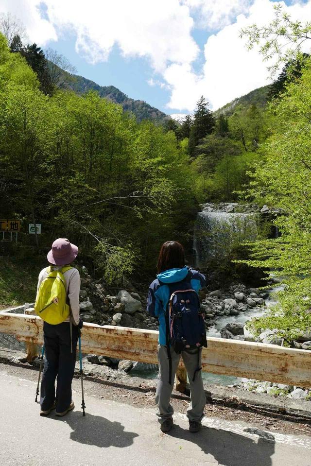 画像1: 次回おすすめのハイキングイベントは…こちら! チャンスは五年に1度! 初夏の駒ケ岳山麓「秘境しらび林道ウォーキング」日帰りツアーです。