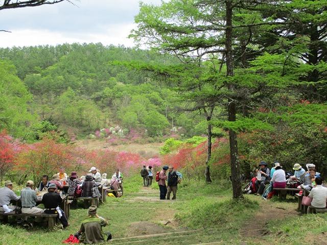 画像8: 【山旅会】横根山と井戸湿原