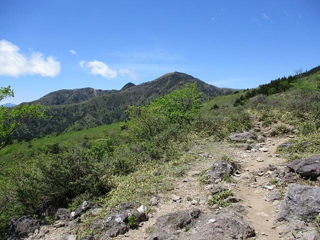 画像5: 【山旅会】八方ヶ原