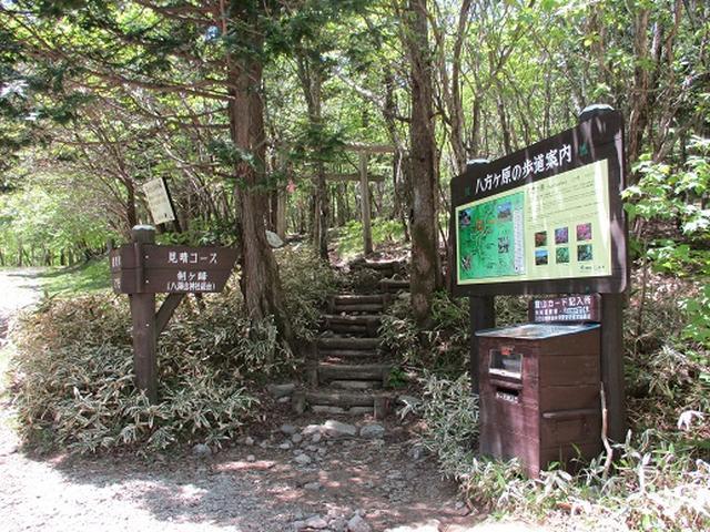 画像3: 【山旅会】八方ヶ原
