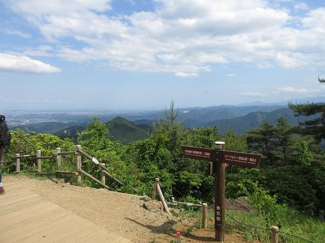 画像9: 【山旅会】金毘羅尾根から日の出山
