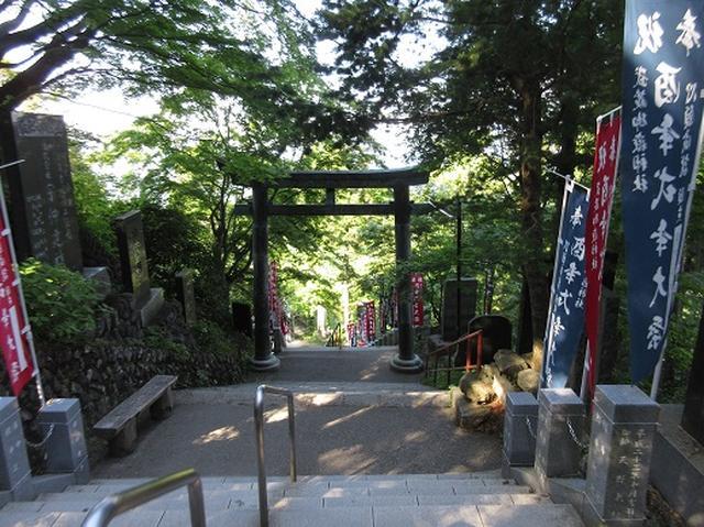 画像10: 【山旅会】金毘羅尾根から日の出山