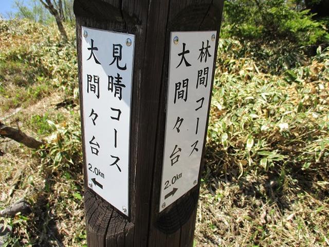 画像8: 【山旅会】八方ヶ原