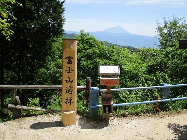 画像8: 【山旅会】羅漢寺山