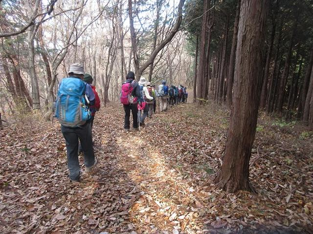 画像3: 【山旅会】大霧山ツアーのご案内