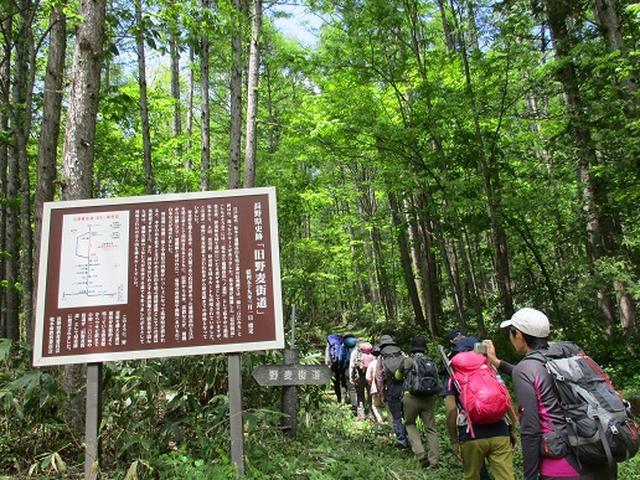 画像1: 【山旅会】野麦峠ハイキング
