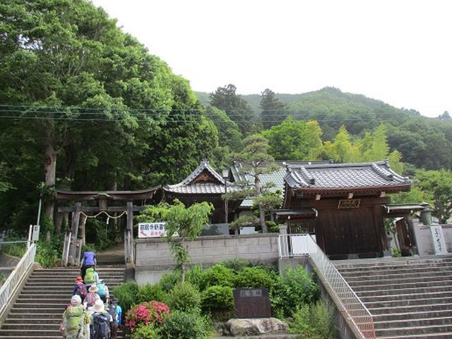 画像1: 【山旅会】相模湖から陣馬山