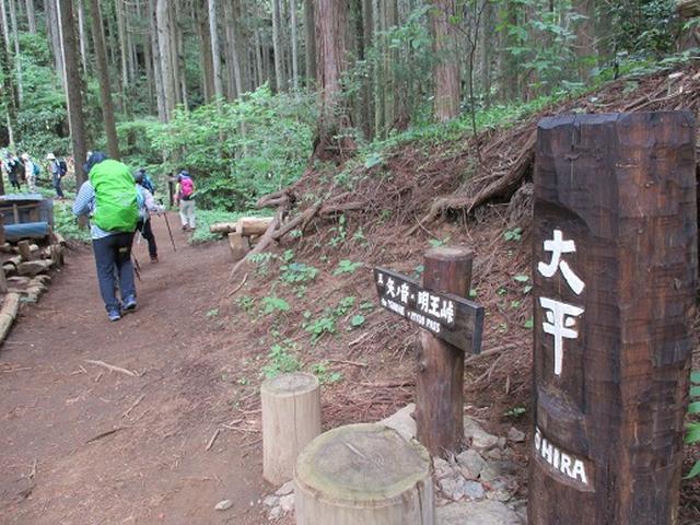 画像6: 【山旅会】相模湖から陣馬山