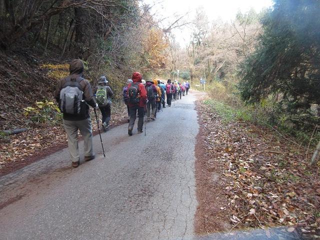 画像9: 【山旅会】大霧山ツアーのご案内