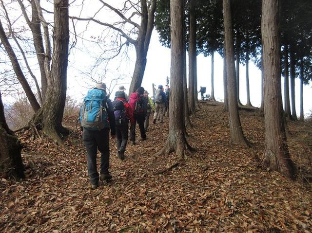画像6: 【山旅会】大霧山ツアーのご案内