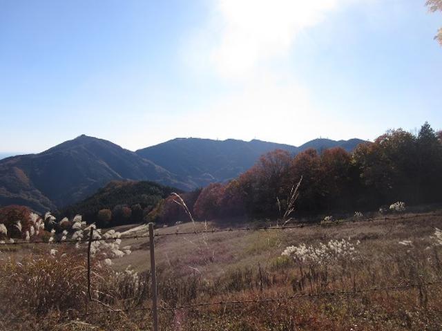 画像5: 【山旅会】大霧山ツアーのご案内