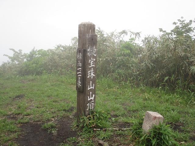 画像4: 【山旅会】擬宝珠山と象山