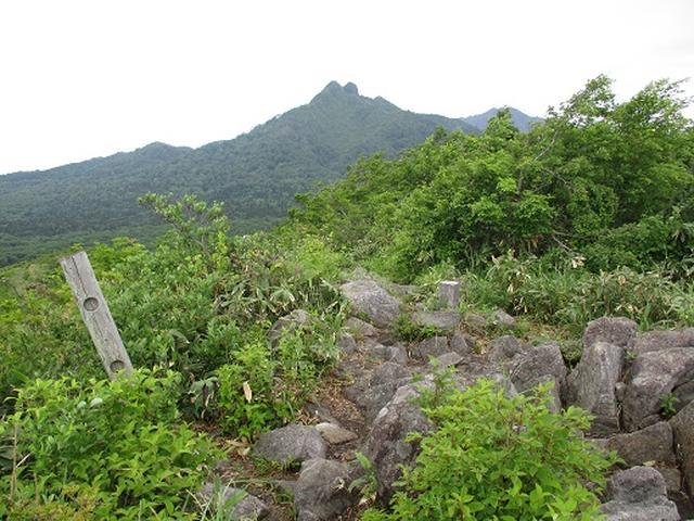 画像8: 【山旅会】擬宝珠山と象山