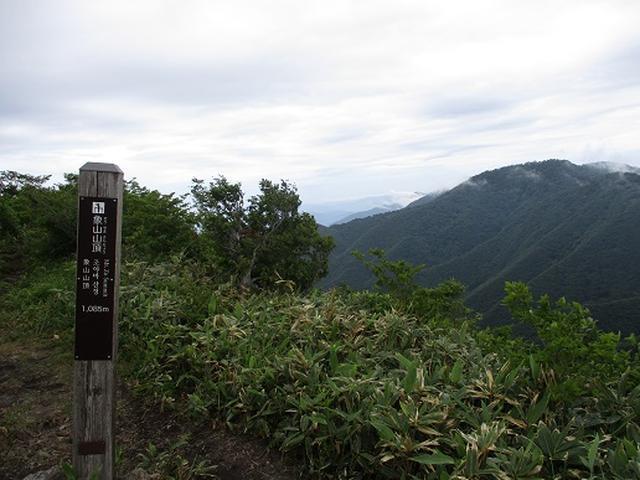 画像7: 【山旅会】擬宝珠山と象山