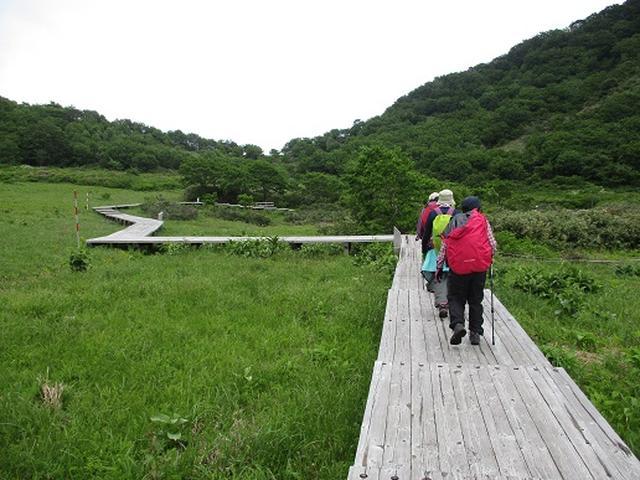 画像10: 【山旅会】擬宝珠山と象山