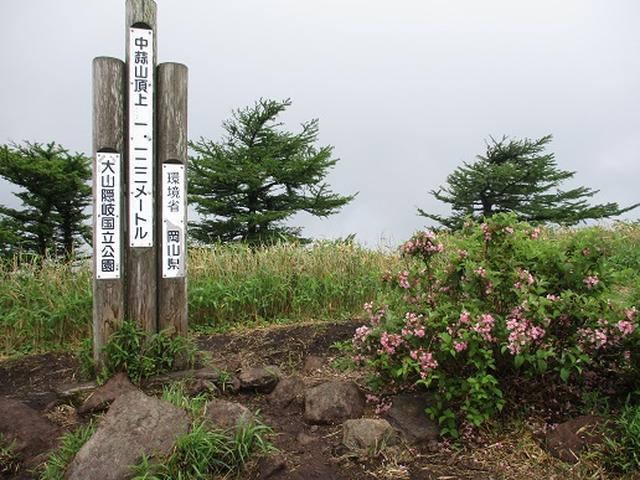 画像9: 【山旅会】中蒜山