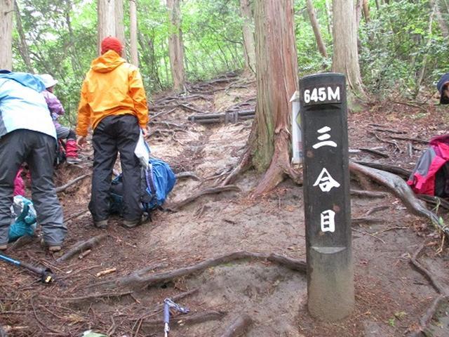 画像3: 【山旅会】中蒜山