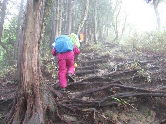 画像6: 【山旅会】中蒜山