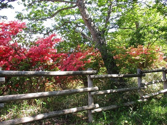 画像2: 【山旅会】赤城地蔵岳