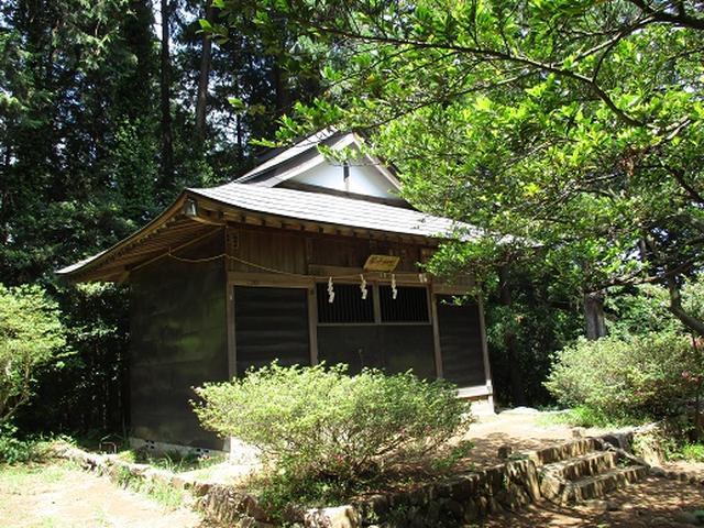 画像1: 【山旅会】金毘羅尾根から日の出山