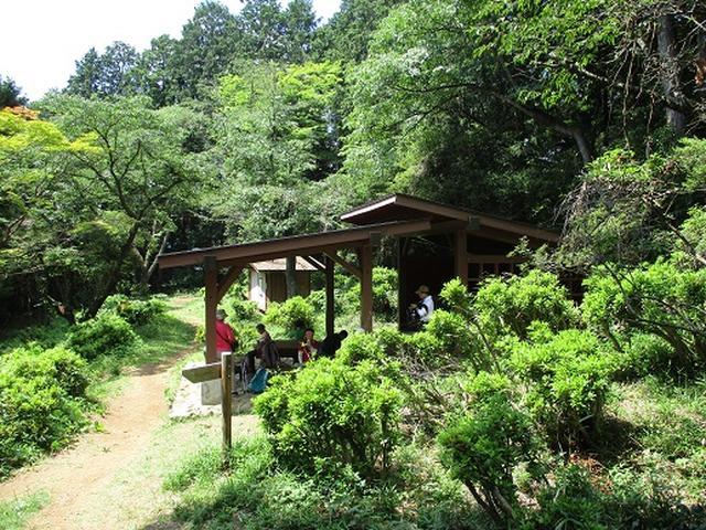 画像2: 【山旅会】金毘羅尾根から日の出山