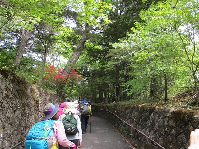 画像1: 【山旅会】日光高山