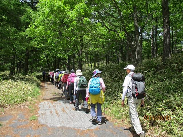画像4: 【山旅会】日光高山