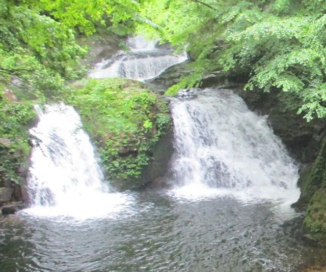 画像10: 【山旅会】赤目四十八滝