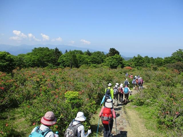 画像11: 【山旅会】八方ヶ原